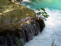 Nationalpark Plitvicer Seen Sommer 2010