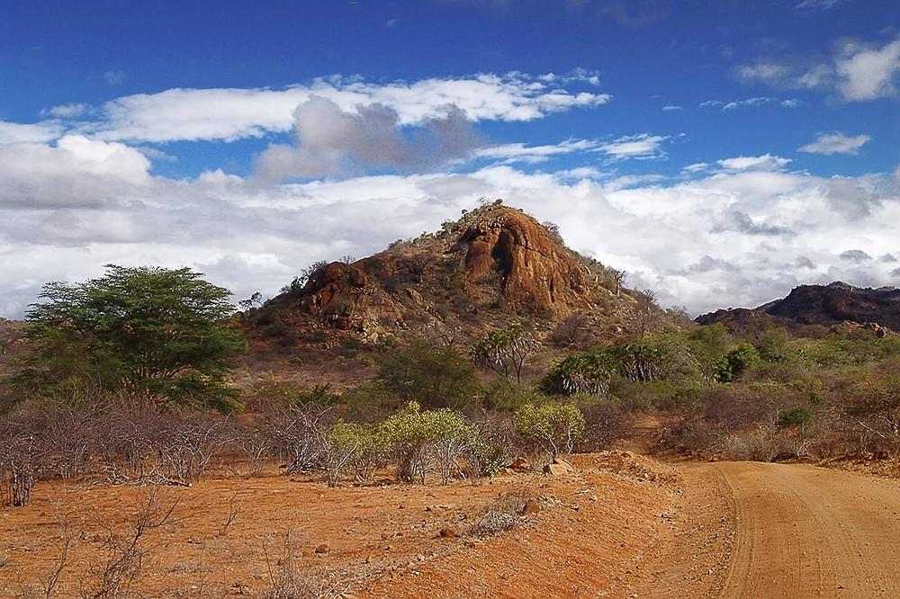 Nationalpark - Tsavo Ost - Kenia