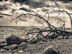 Nationalpark_Jasmund_03