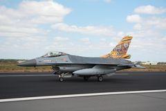 NatoTiger Meet 2014 #13 General Dynamics F-16AM