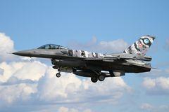 NatoTiger Meet 2014 #17 General Dynamics F-16CJ