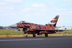 NatoTiger Meet 2014 #8 Eurofighter EF-2000 Typhoon S