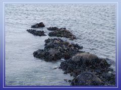 Natürliche Steinmole