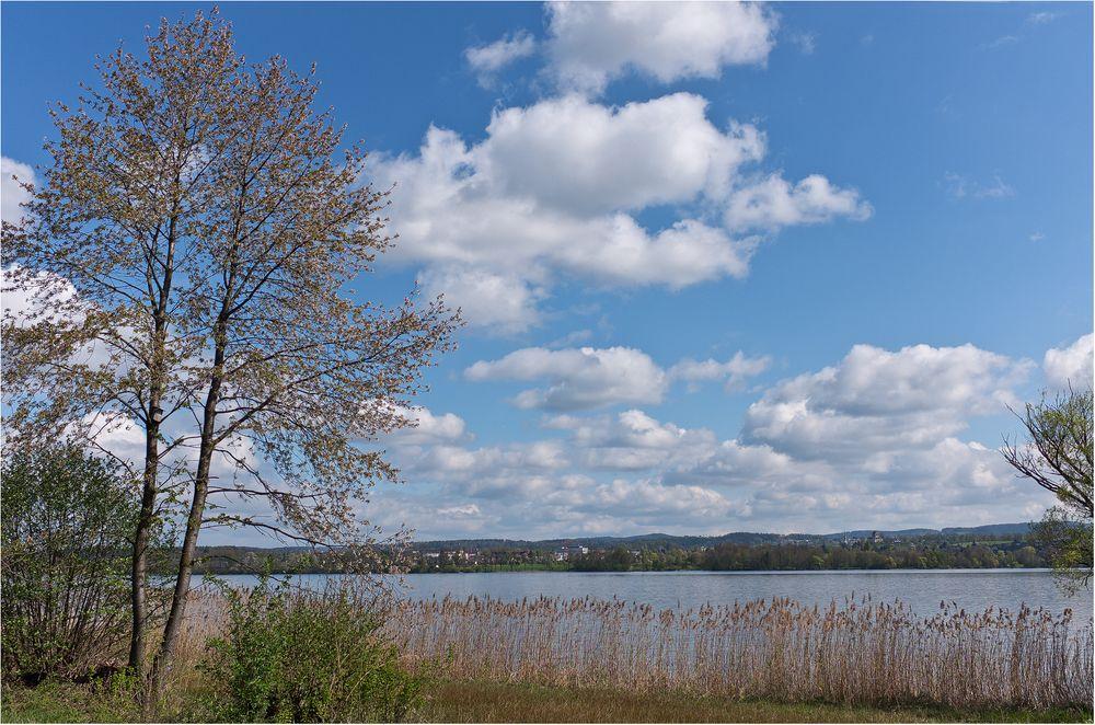 Natürliches Ufergestade