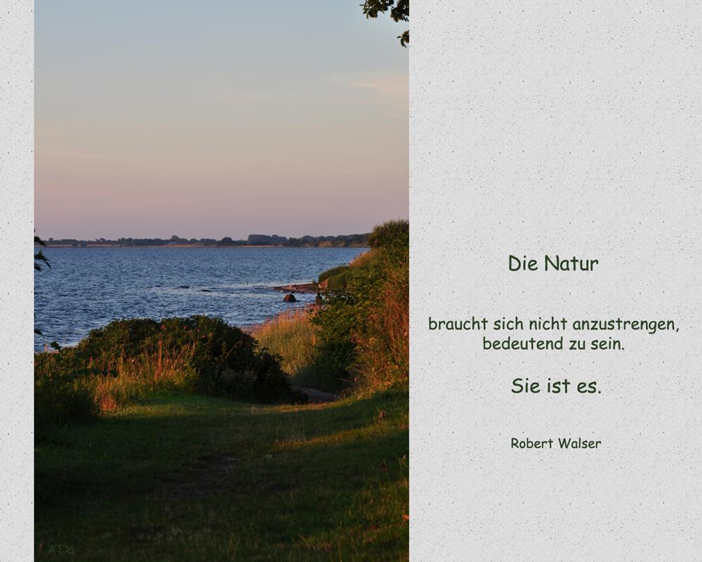 **Natur**