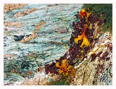 Natur abstrakt - Küste