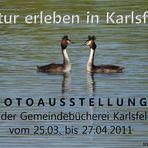 Natur erleben in Karlsfeld