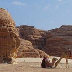 Natur im Sinai