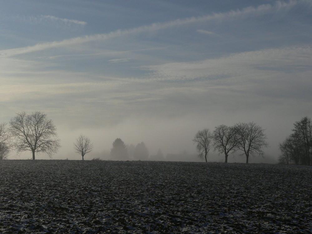 Natur im Winterschlaf II