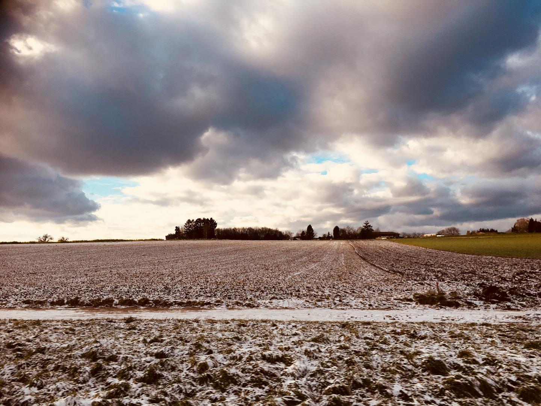 Natur Impressionen im Winter