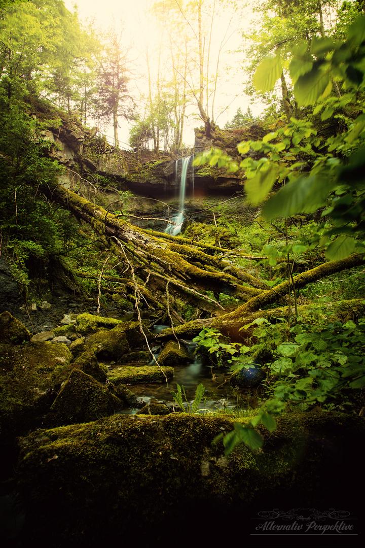 Natur in Welzheim