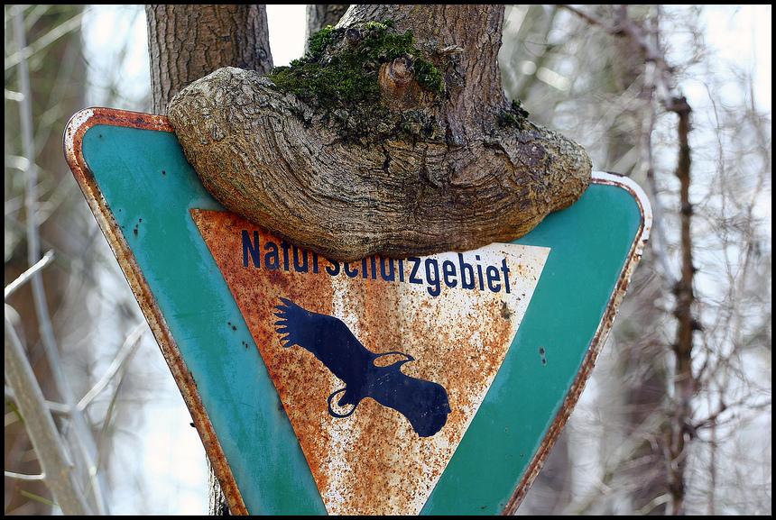 Natur liebt Schutzgebiet