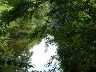 Natur pur 3