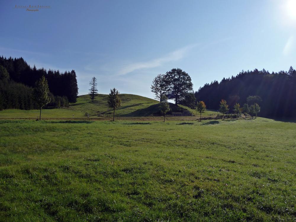 """""""Natur pur an der Hauptstraße Missen - Immenstadt"""""""