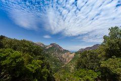 Natur-pur auf Korsika...
