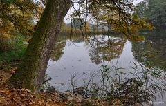 Natur pur. Herbst in Bayern