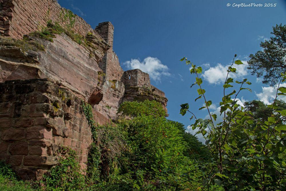 Natur und Burg Altdahn Grafendahn Tanstein