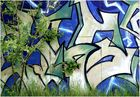 Natur und Graffiti