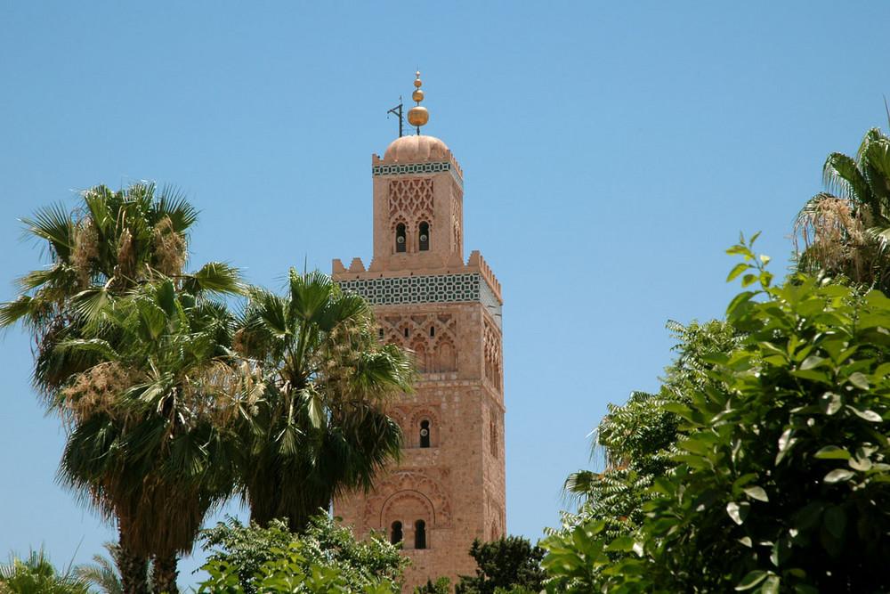 Natur und Stein in Marrakesch
