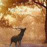 Natur und Tiere der Heimat #gemeinsamyoutube
