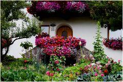 Natur-Vorgarten