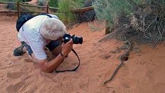 Natur& Wildlife Fototours