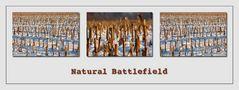 Natural Battlefield
