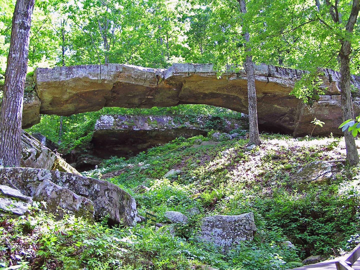 Natural Bridge in Arkansas