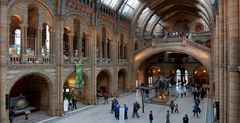 Natural History Museum, Eingangshalle