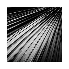 natural structure - IV -