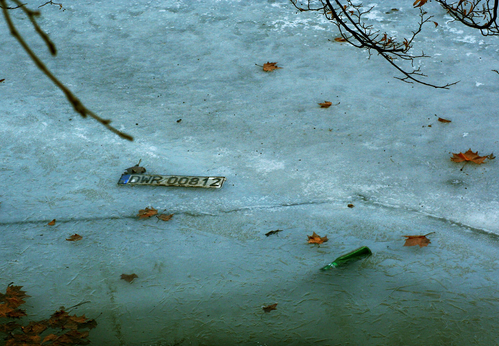 Natura...morta ghiacciata