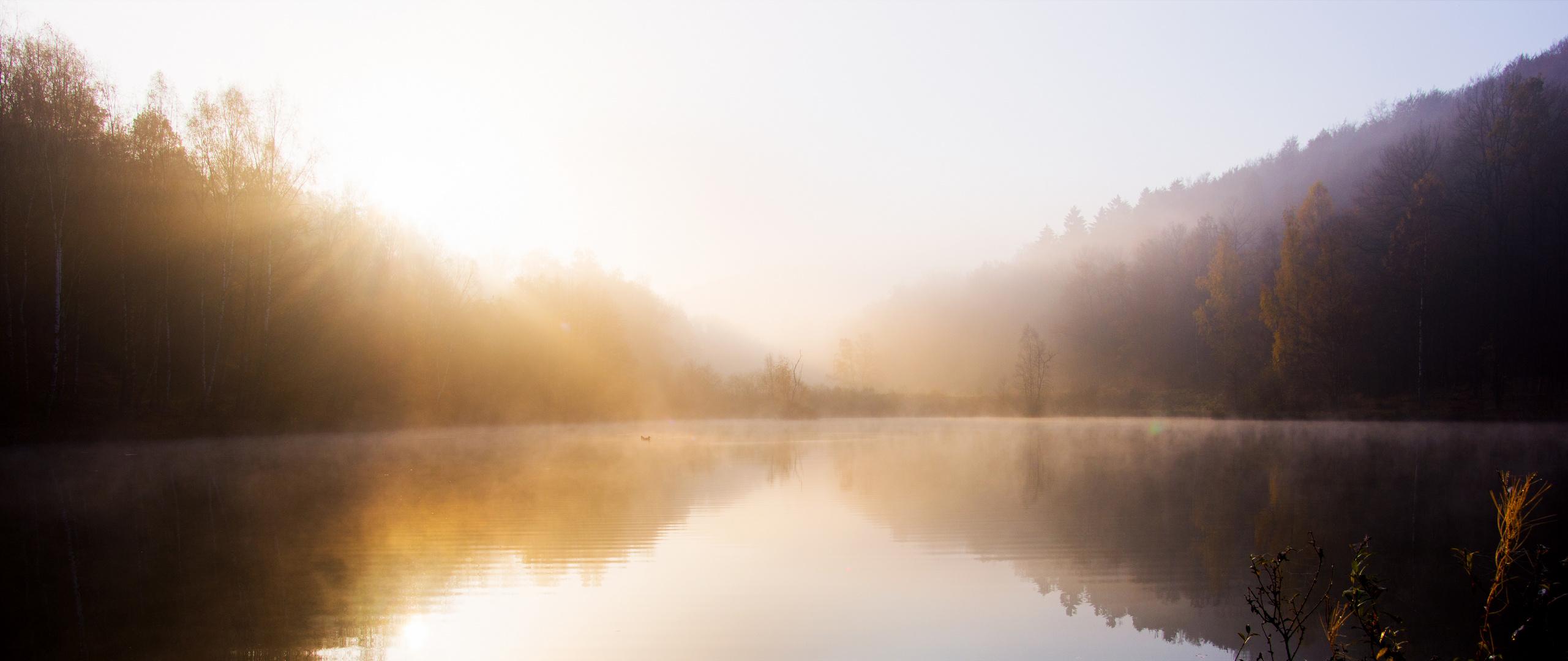 Nature DPC181 Serenity