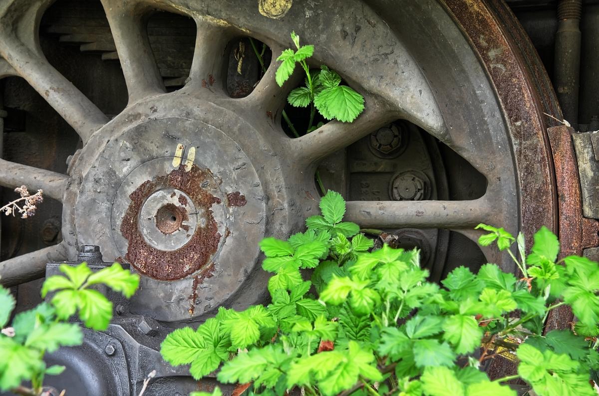 Nature meets rust