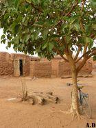 Nature morte du Burkina Faso.
