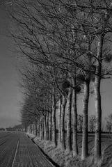 Nature morte en Normandie