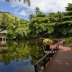 Naturelle Seychelles