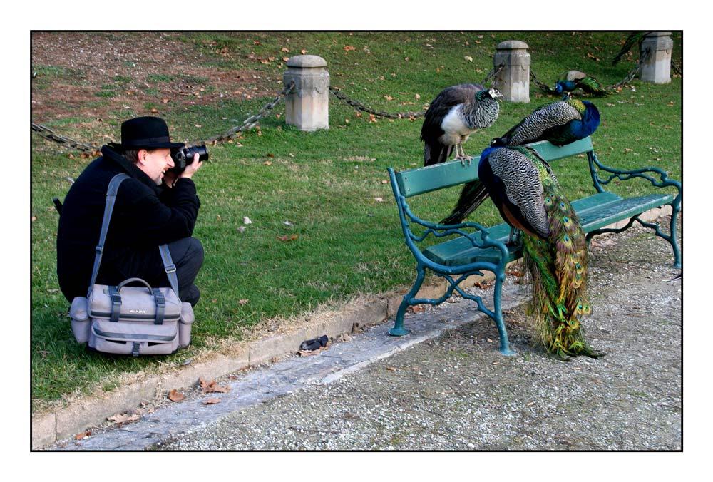 Naturfotografen und die Objekte ihrer Begierden #03