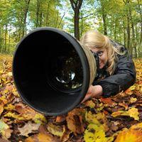 Naturfotografie Julia Kauer