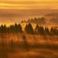 Naturfotografie - Maximilian