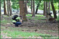 Naturfotografie S.W