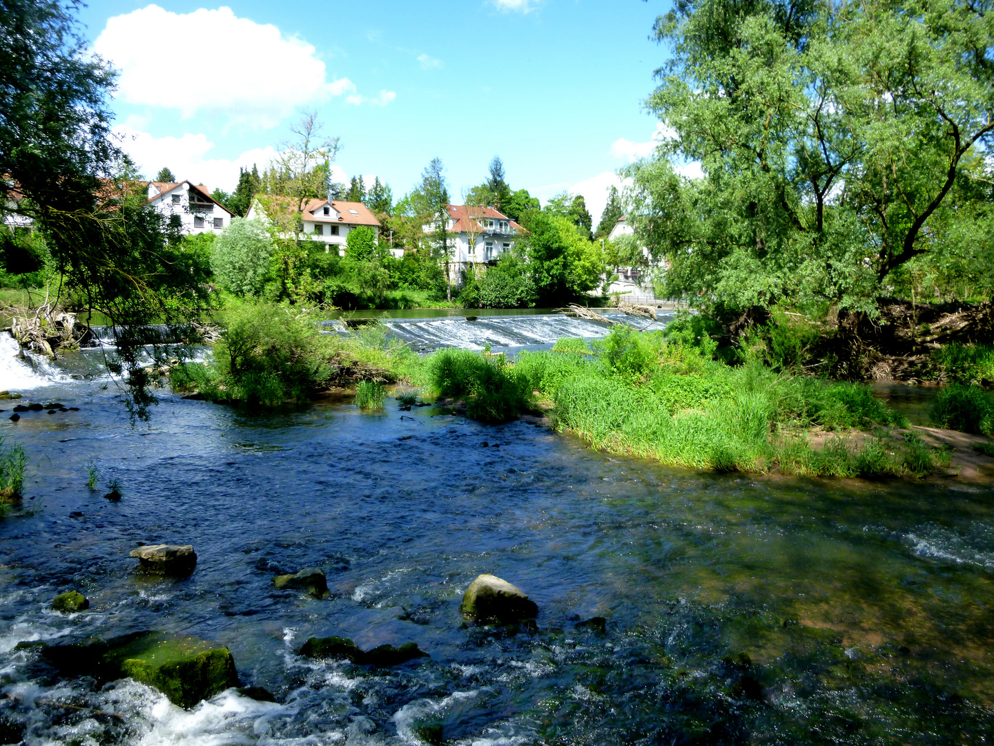 Naturlandschaft am Fluss