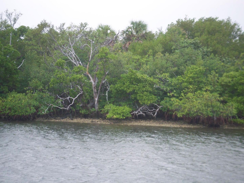 Naturpark in Florida