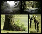 Naturpark Jasmund