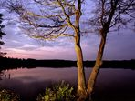 Naturpark Schwalm-Nette | Fotoworkshop - Landschaftsfotografie