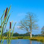 Naturpark Schwalm Nette - Wasserblicke und Wasserwelten