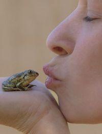 Naturphotographie - Heike Lorbeer