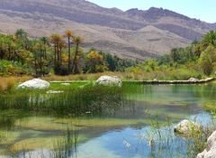 Naturpool Wadi Bani Khalid