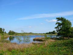Naturschutzgebiet bei Juhlschau