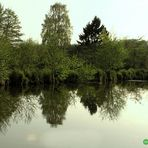 Naturschutzgebiet in Büttelborn