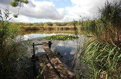 Naturschutzgebiet Siebleber Teich